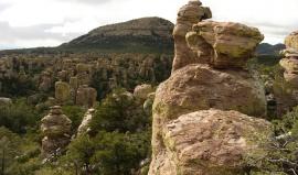Jihem Arizony za kaktusy Sonorské pouště
