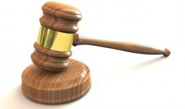 Podivné zákony Michiganu: Nesmíte vrabce přebarvit na papouška a prodávat ho
