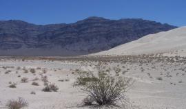 Za hradbu Sierra Nevady do kalifornských pouští