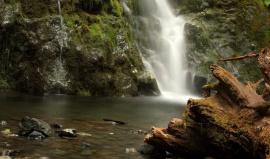 Z deštných pralesů Olympiku na jih podél pobřeží do Oregonu