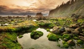 Olympijský národní park: Skvost, kde příroda září zlatou, stříbrnou i bronzovou