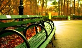 7 věcí, které musíte udělat na podzim v New Yorku