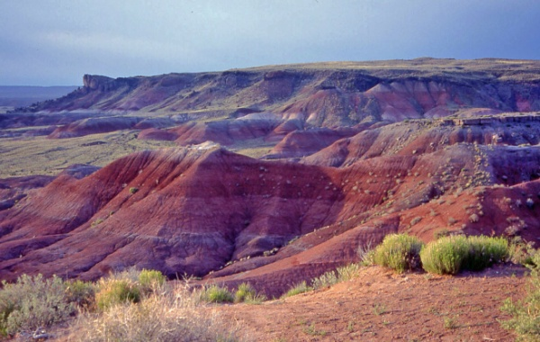 Painted desert v Arizoně