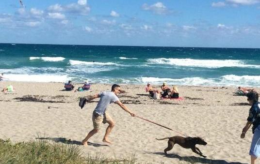 Jupiter Dog Beach, Florida