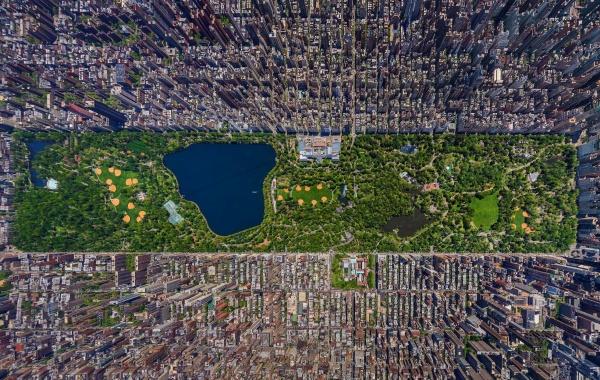 Stromy v Central Parku bojují s okolní betonovou přesilou