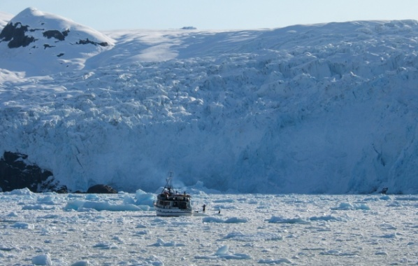 Aljaška kry