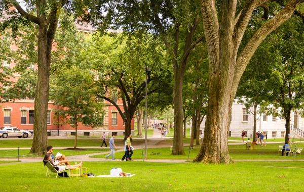 Harvard yard - amerika.cz