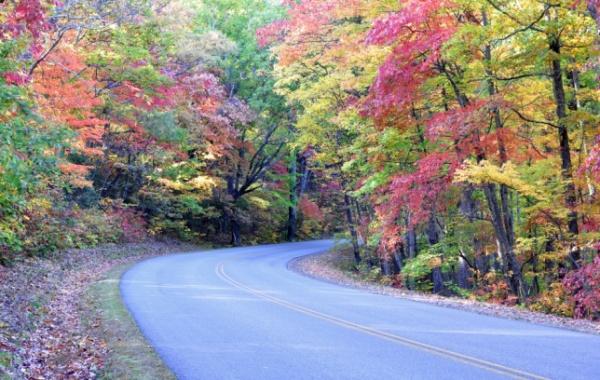 Nádherný barevný podzim u silnice Blue Ridge Parkway v severovýchodní oblasti USA