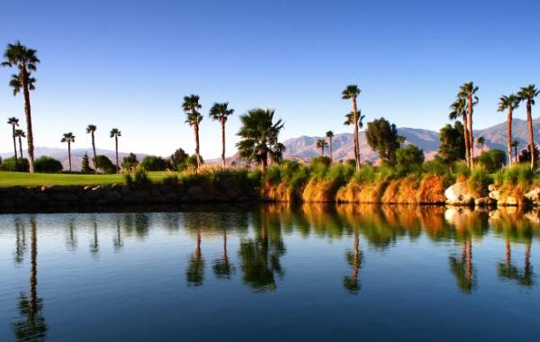 Palmy u jezírka v Palm Springs