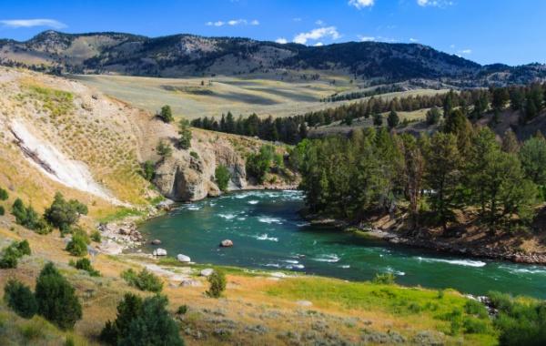 Vzpomínáme na léto u řeky Yellowstone