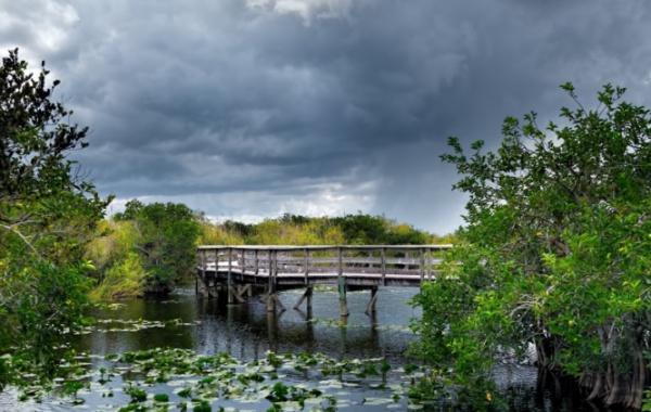 Everglades - dřevěný můstek