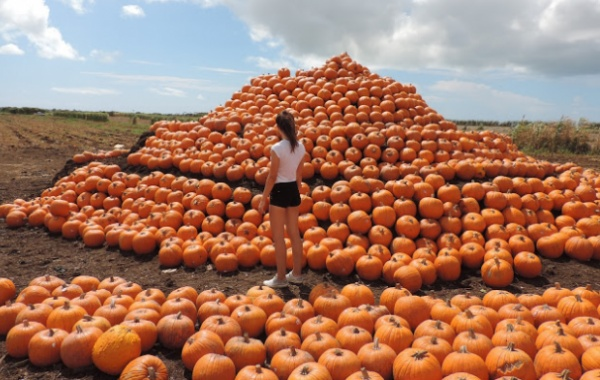 Laura při Halloweenu v USA