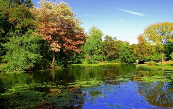 Prospect Park NY