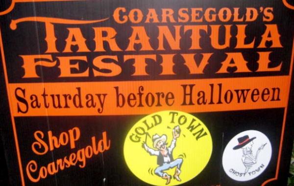 Tarantula Festival