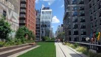 High Line Park v americkém New Yorku