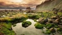 Olympic national park ve státě Washington