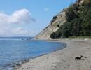 Double Bluff Beach, Washington