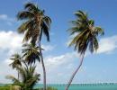 Bahia Honda Key, Florida - Amerika.cz