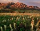 Hora Flatirons je symbolem města Boulder. Z jeho plání ale dohlédnete až na Rocky Mountains.