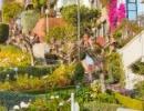 Lombard Street v San Franciscu