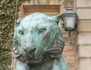 Maskot tygr univerzity v Princetonu