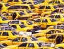 Když v Miami na letišti potřebujete taxi, nemáte problém
